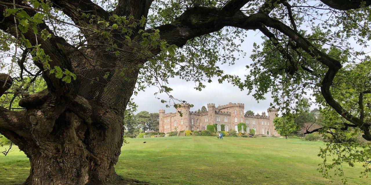 Visit to Cholmondeley Castle Gardens 2019