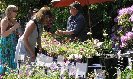 Plant Hunters' Fairs