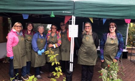 Plant and Bulb Sale – Sunday 19th September 2021